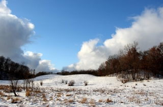 Barry County Snowscape